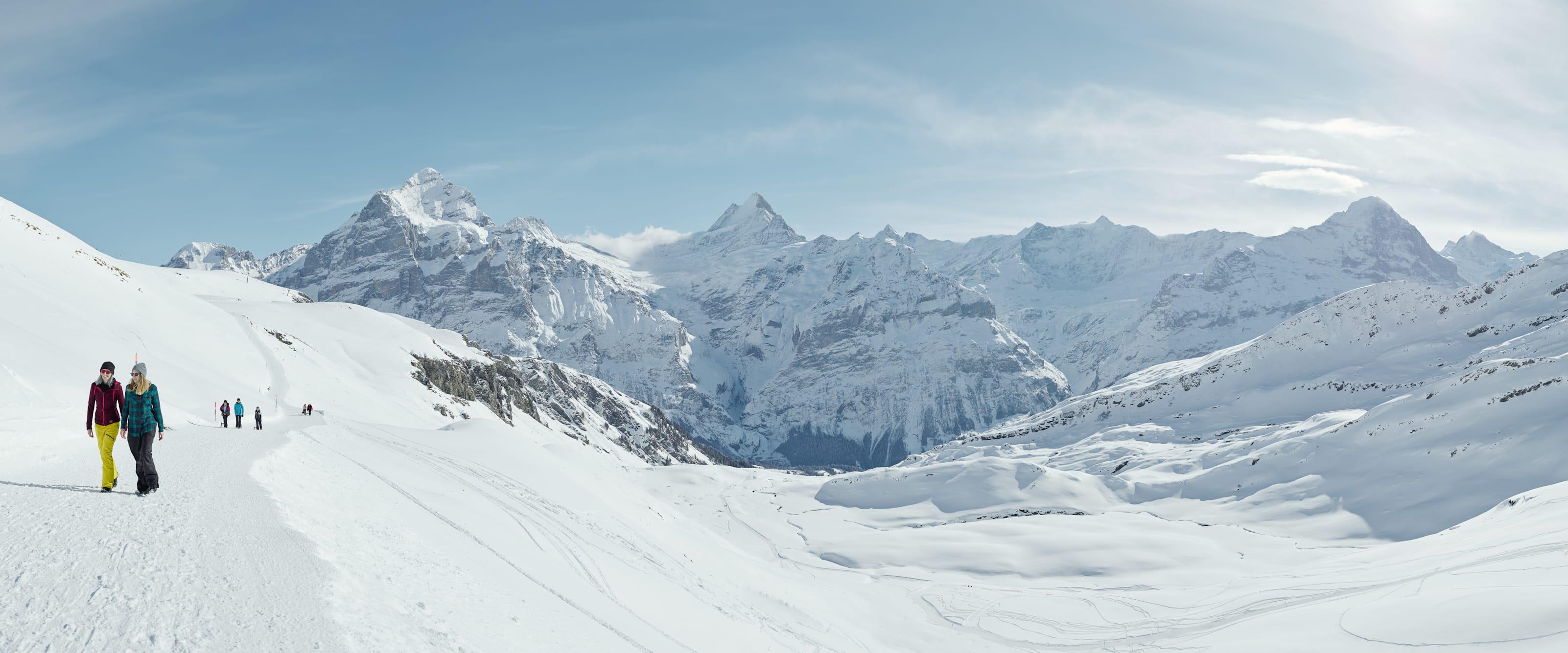 Grindelwald First Waldspitz Schreckhorn Winter Wandern Panorama