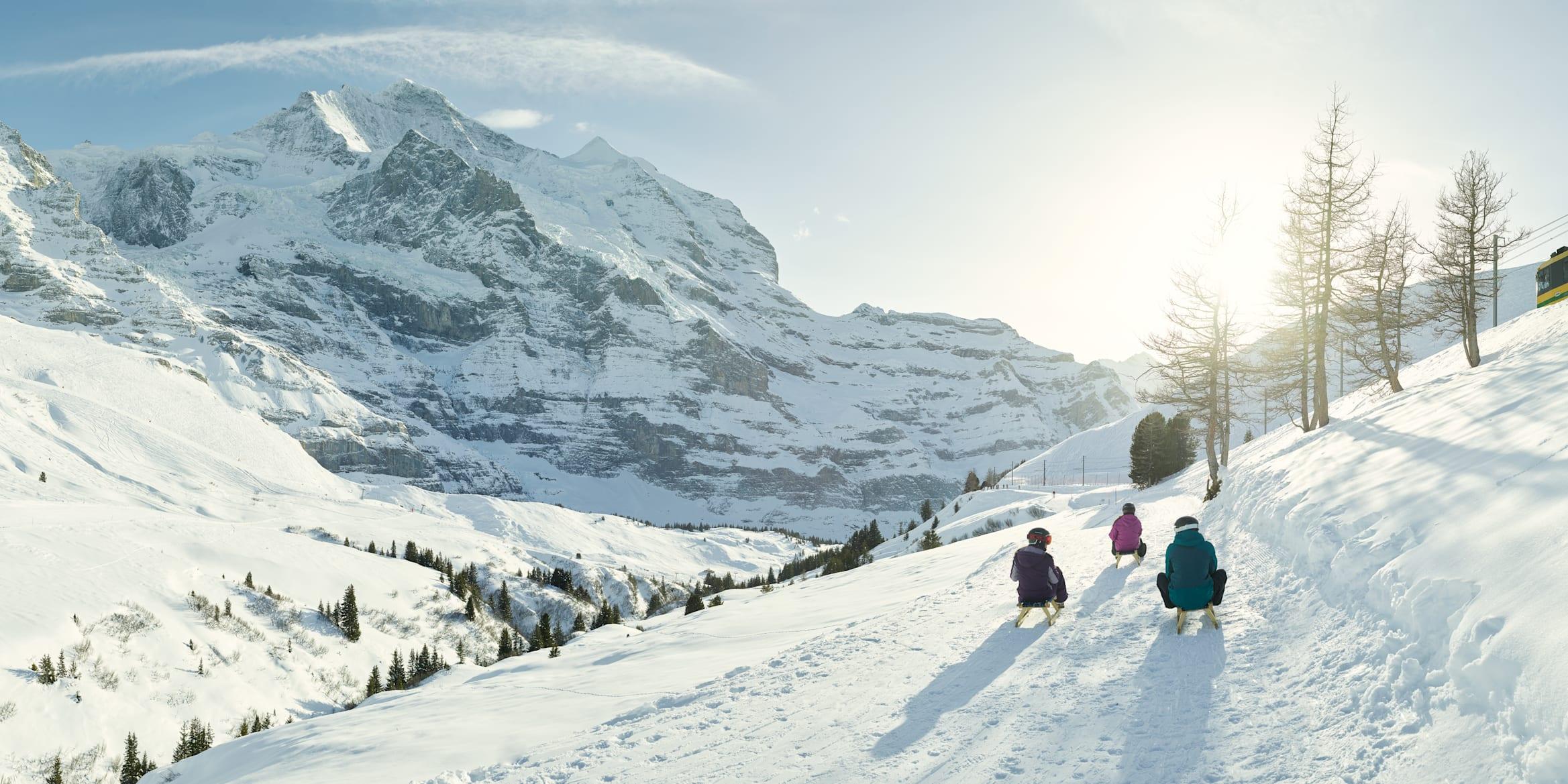 Winter sledging Bernese Oberland