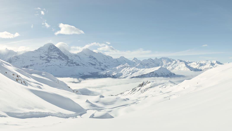 Bussalp Schlitteln Big Pintenfritz Panorama Eiger Jungfrau