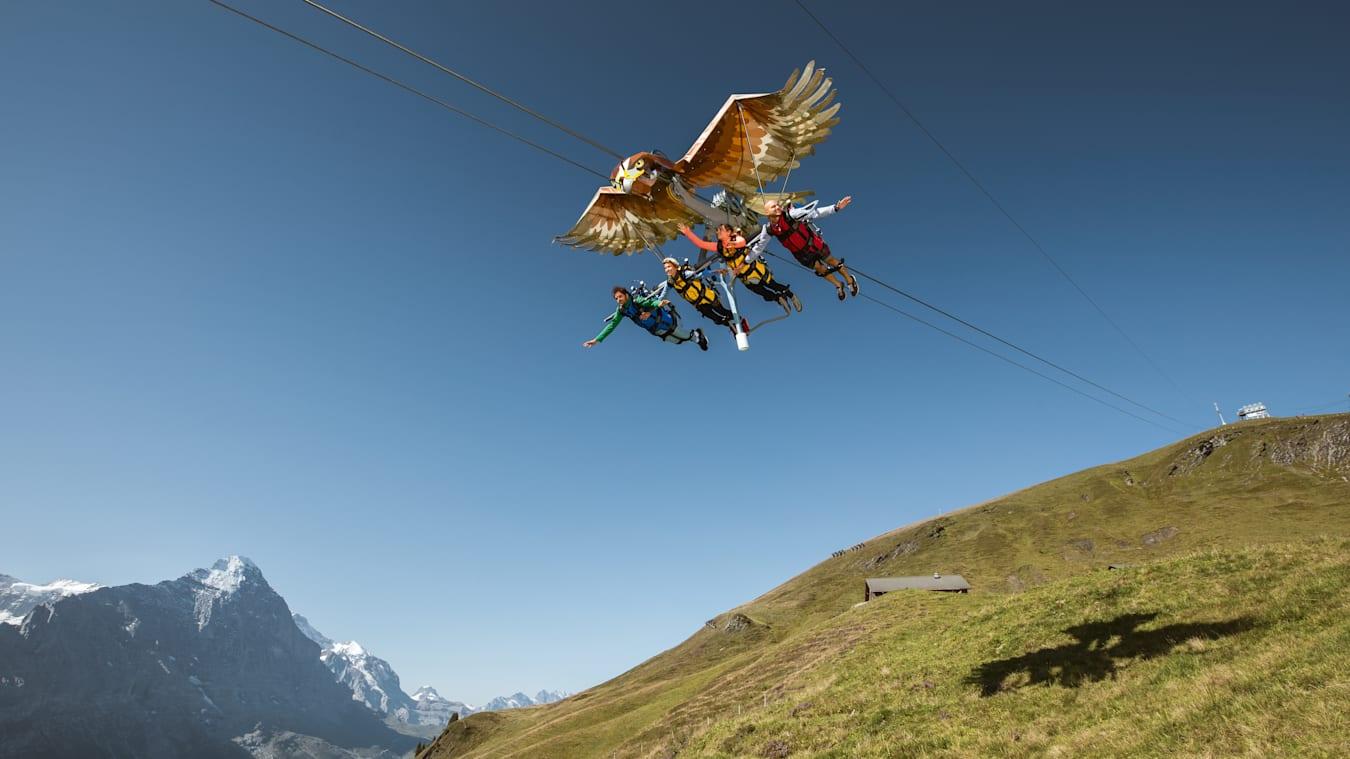 First-Glider, Grindelwald-First-Sommer, Sommer