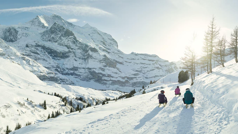 Schlitteln Winter Berner Oberland