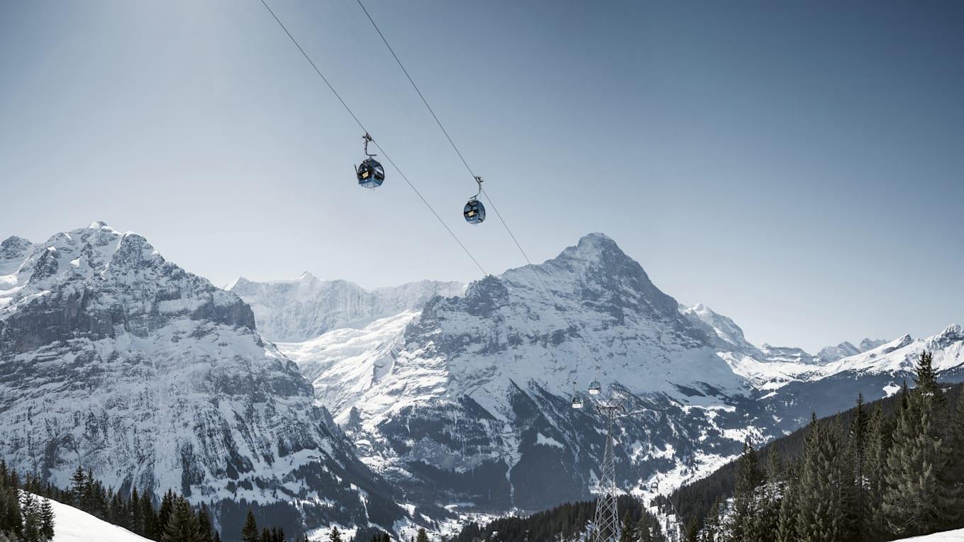Grindelwald First Eiger Schreckhorn Firstbahn Snow