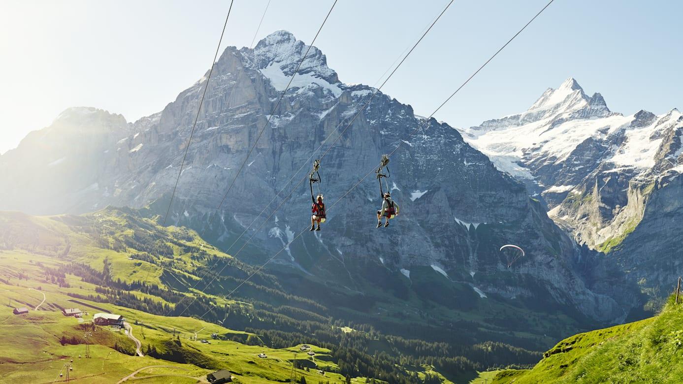 Grindelwald First Flieger Sommer Wetterhorn Schreckhorn Alpen