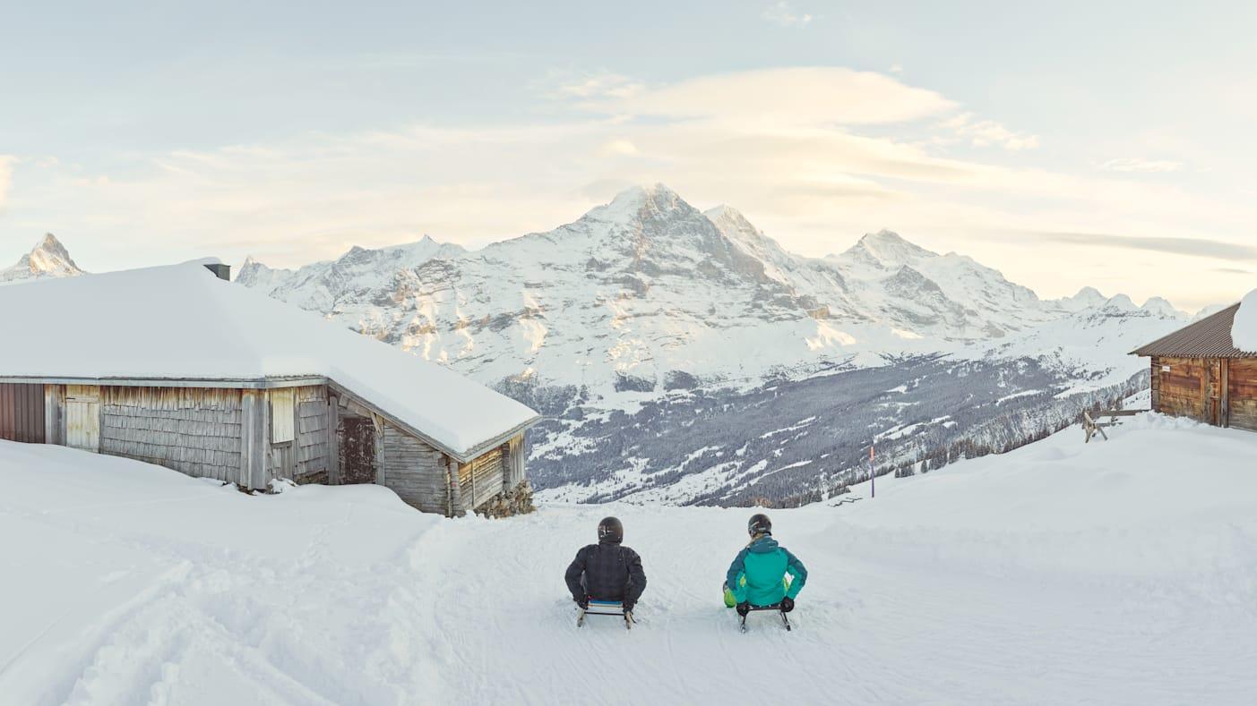 Big-Pintenfritz, Erlebnisse-Aktivitaeten, Jungfrau-Ski-Region, Neuschnee, Schlitteln, Skigebiet-Grindelwald-First, Winter