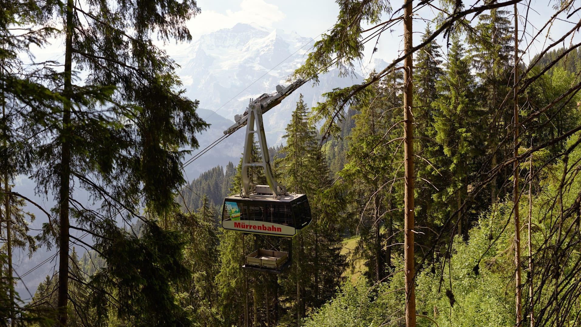 Bergbahn Lauterbrunnen Muerren Sommer Wald
