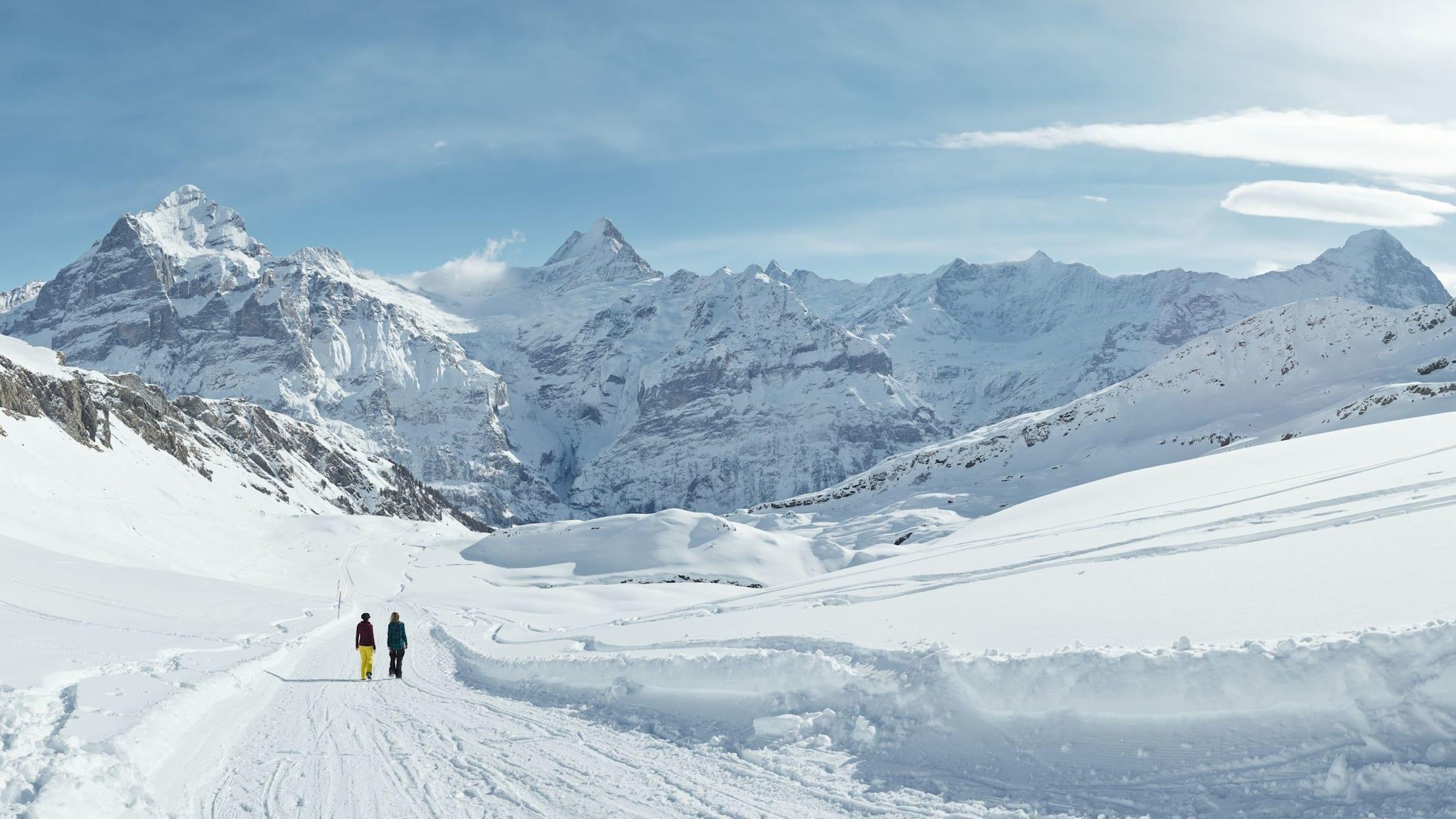 Winterwandern Wetterhorn Schreckhorn Eiger Panorama