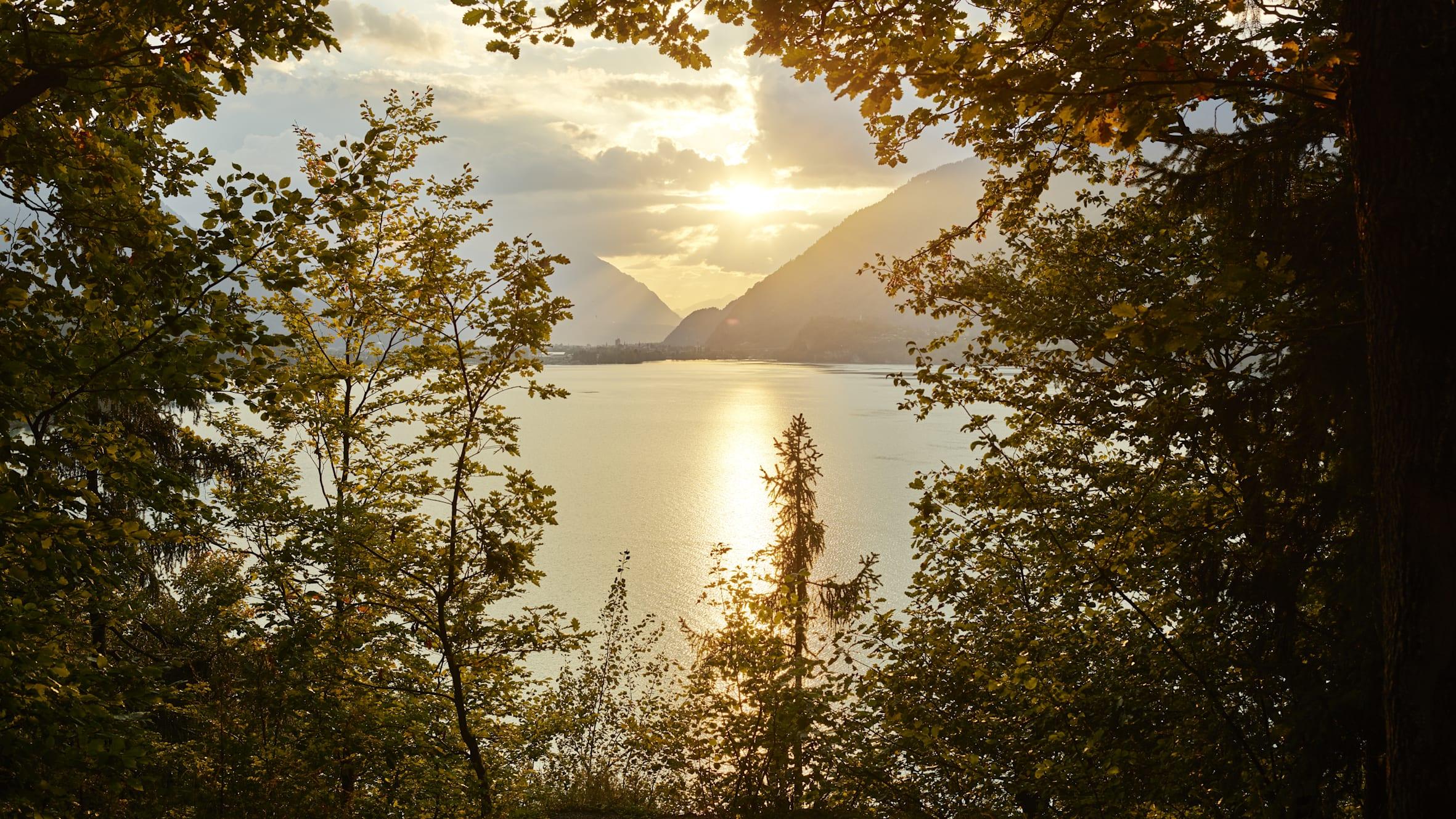 Brienzersee Iseltwald Berner Oberland Sonnenuntergang