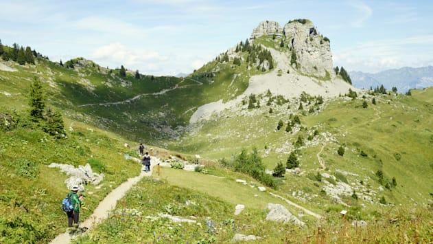 Schynige Platte Wandern Oberberghorn