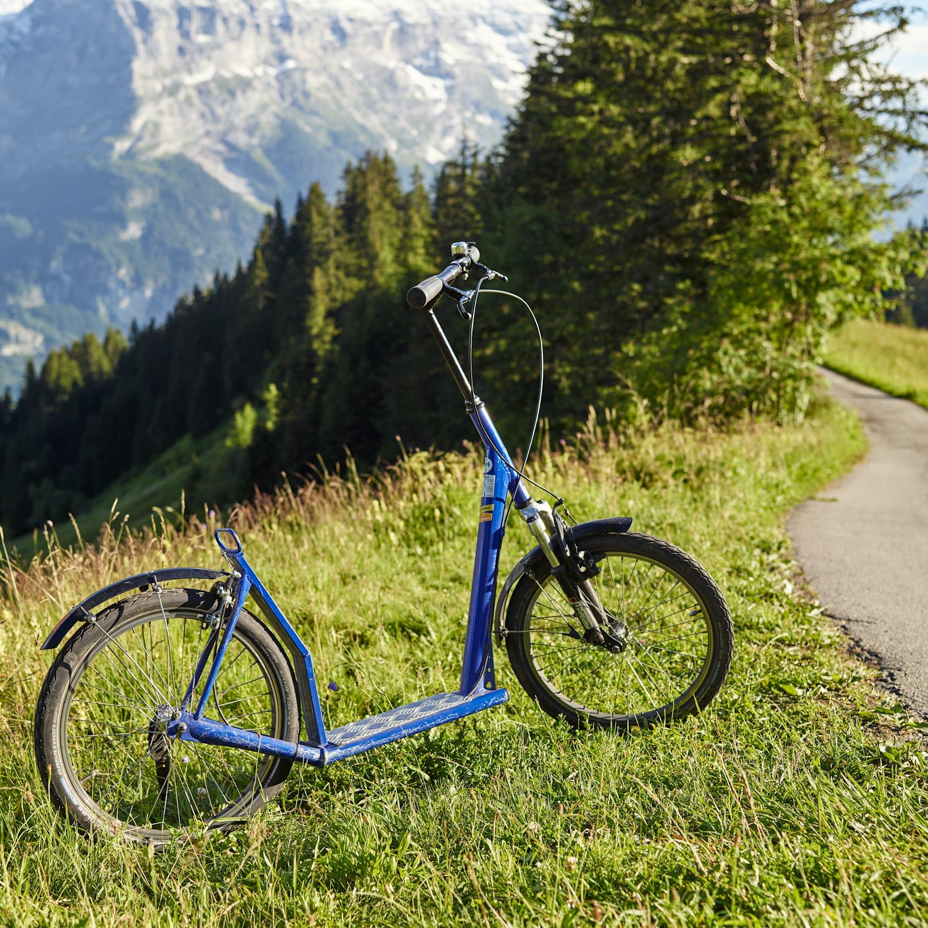Grindelwald First Trottibike Weg Wiese Sommer