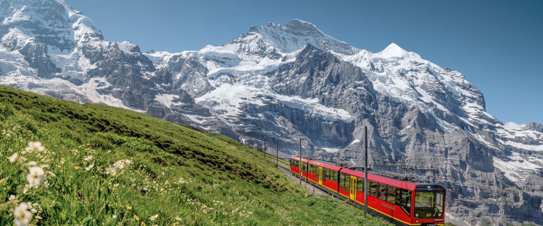 Asia Jungfrau
