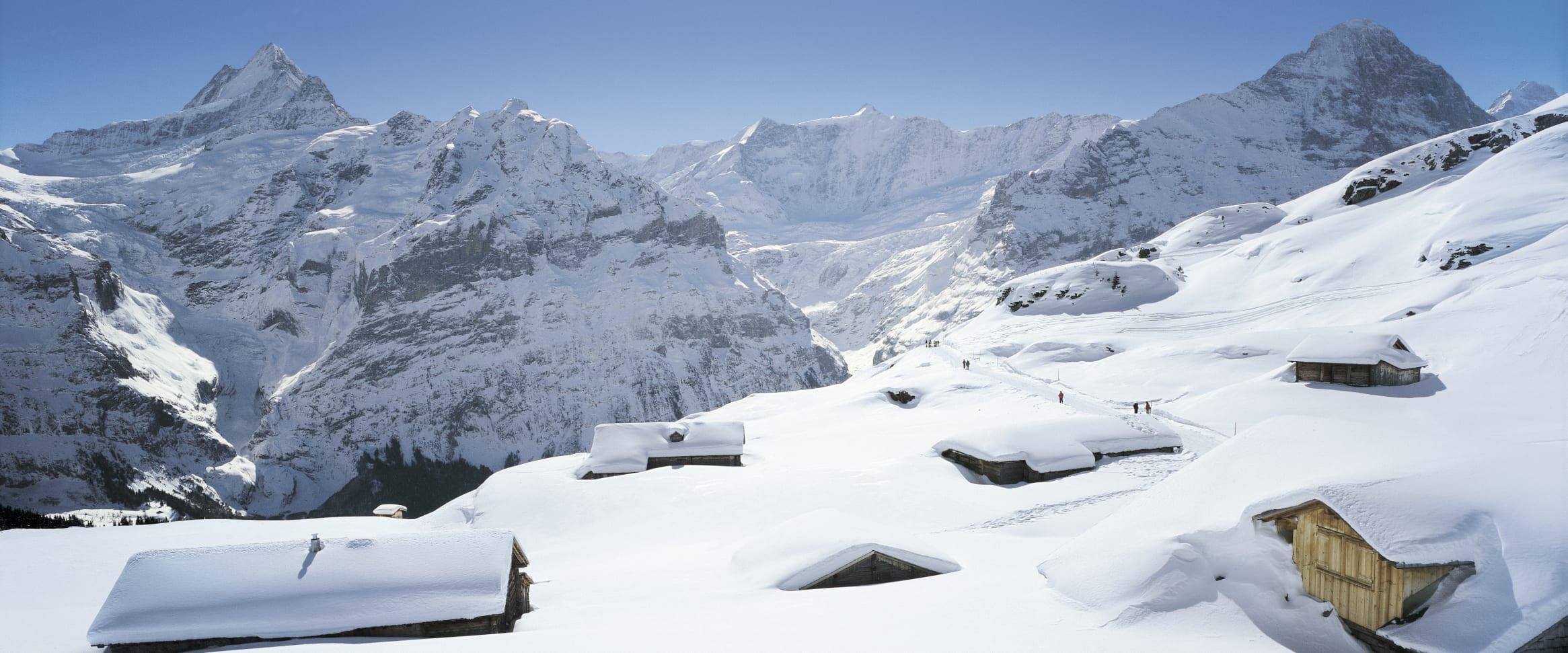 WEBSEITE_Skigebiet-Grindelwald-First