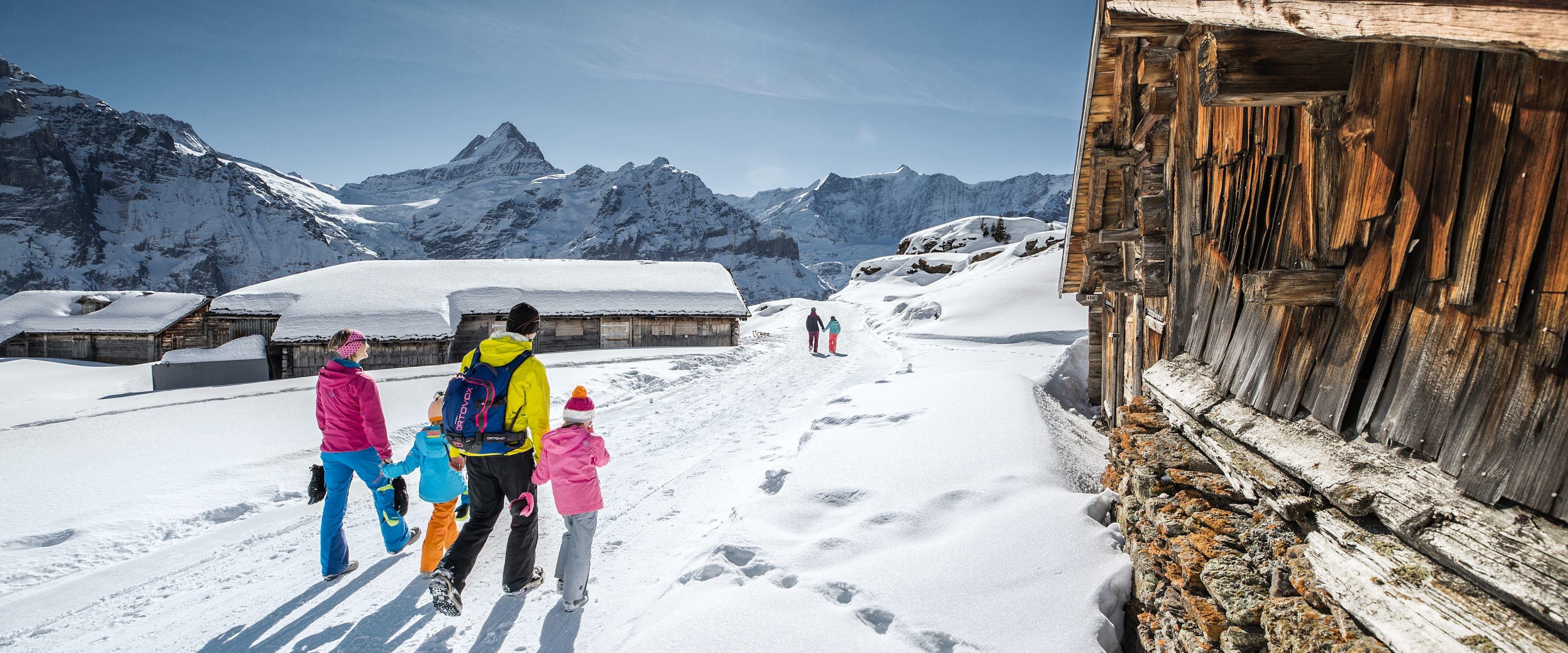 Hiking Sledging Pass Grindelwald Wengen