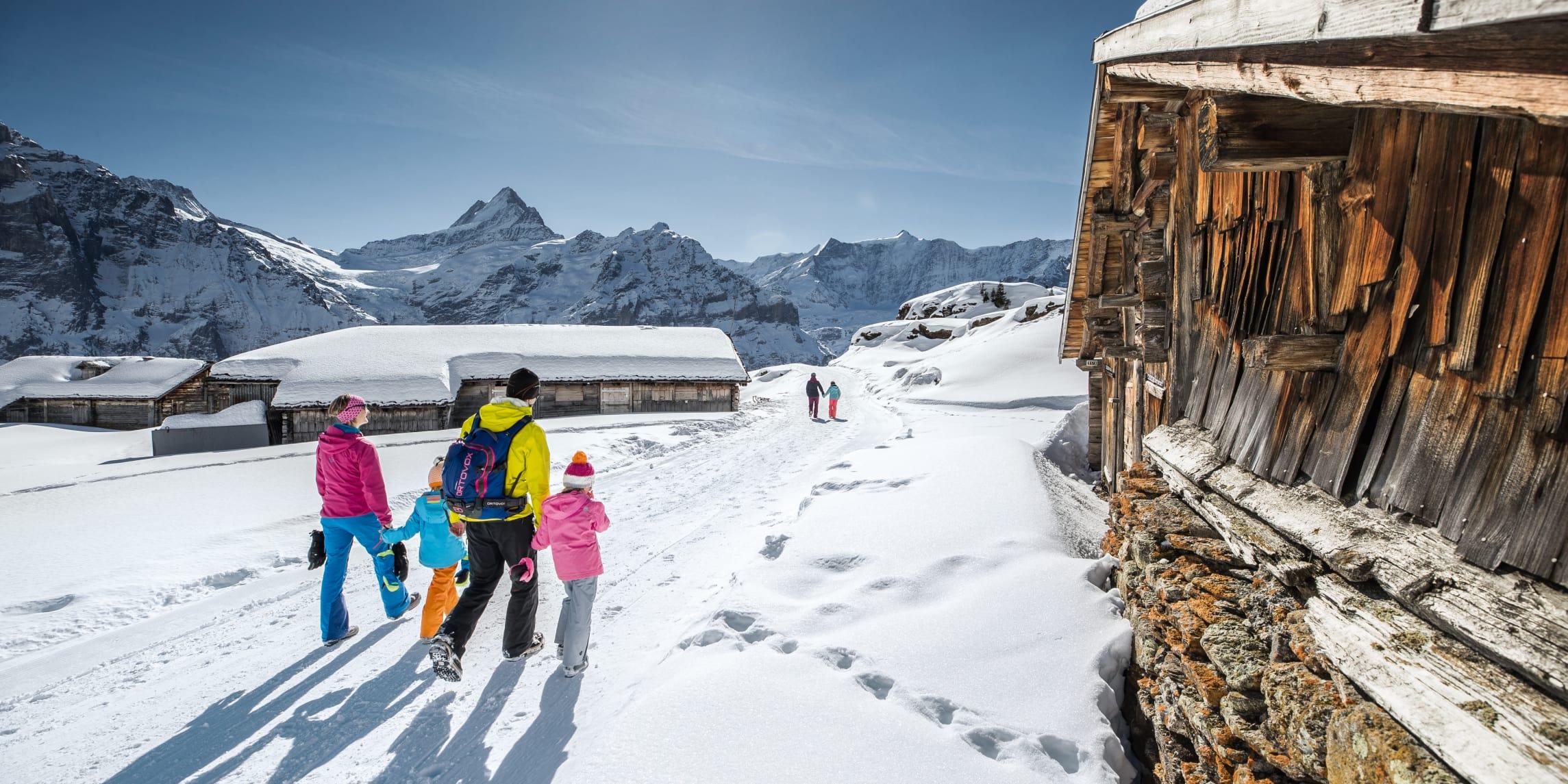 Wander Schlittelpass Grindelwald Wengen