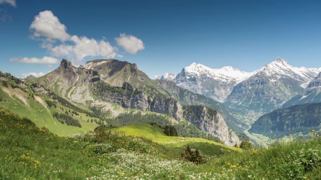 Wanderticket Schynige Platte Grindelwald First