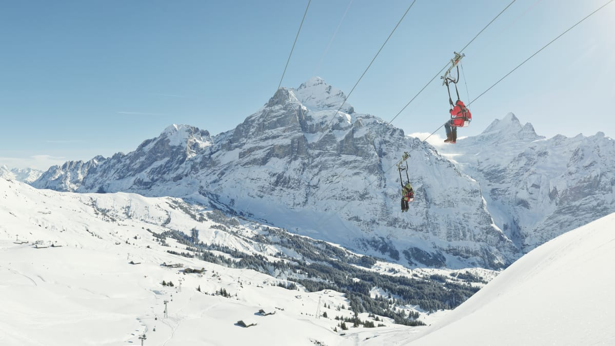 First Flyer winter snow Grindelwald Eiger