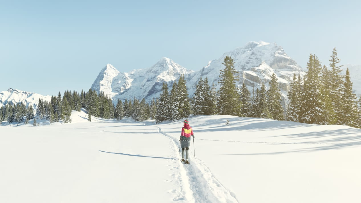 Erlebnisse-Aktivitaeten, Jungfrau-Ski-Region, Neuschnee, Schneeschuhwandern, Winter, Winteregg-Muerren