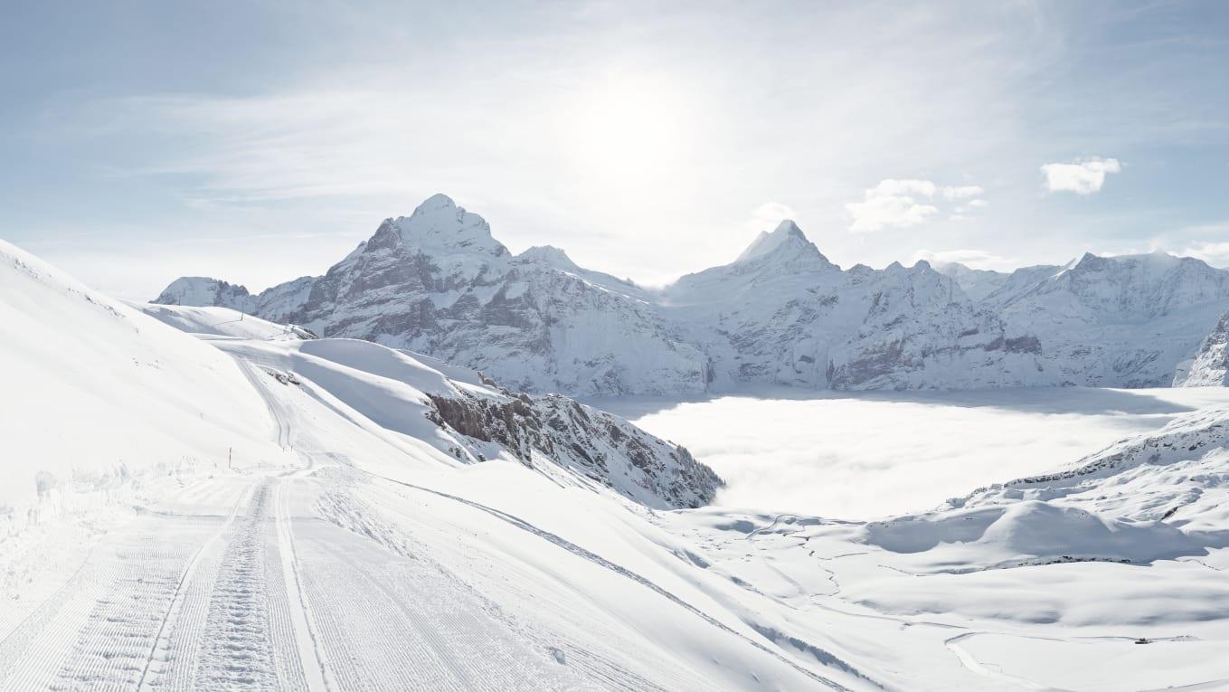 Erlebnisse-Aktivitaeten, Jungfrau-Ski-Region, Neuschnee, Skigebiet-Grindelwald-First, Winter, Winterwandern