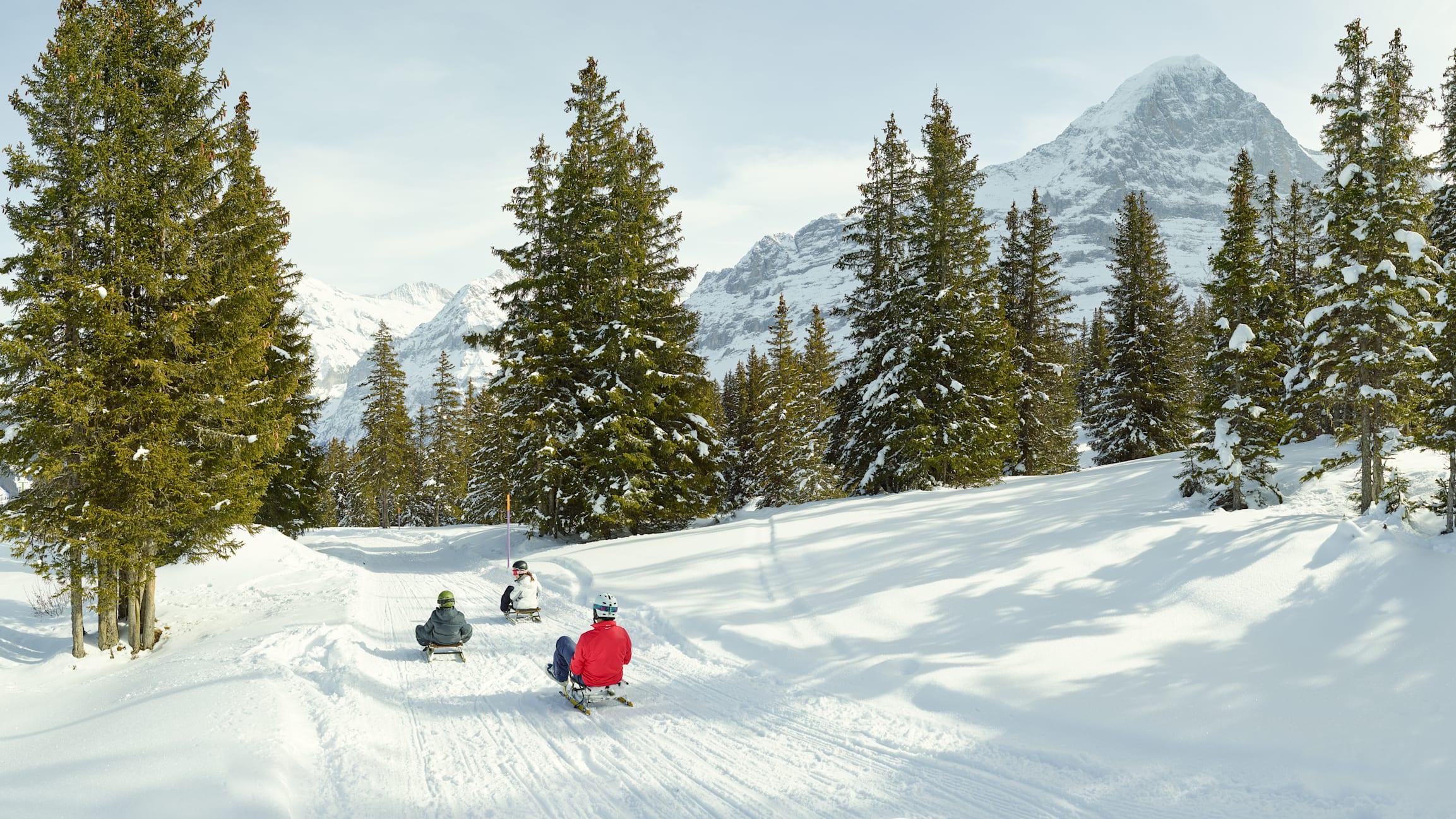 Schlitteln Ritas Speedway Maennlichen Grindelwald Eiger