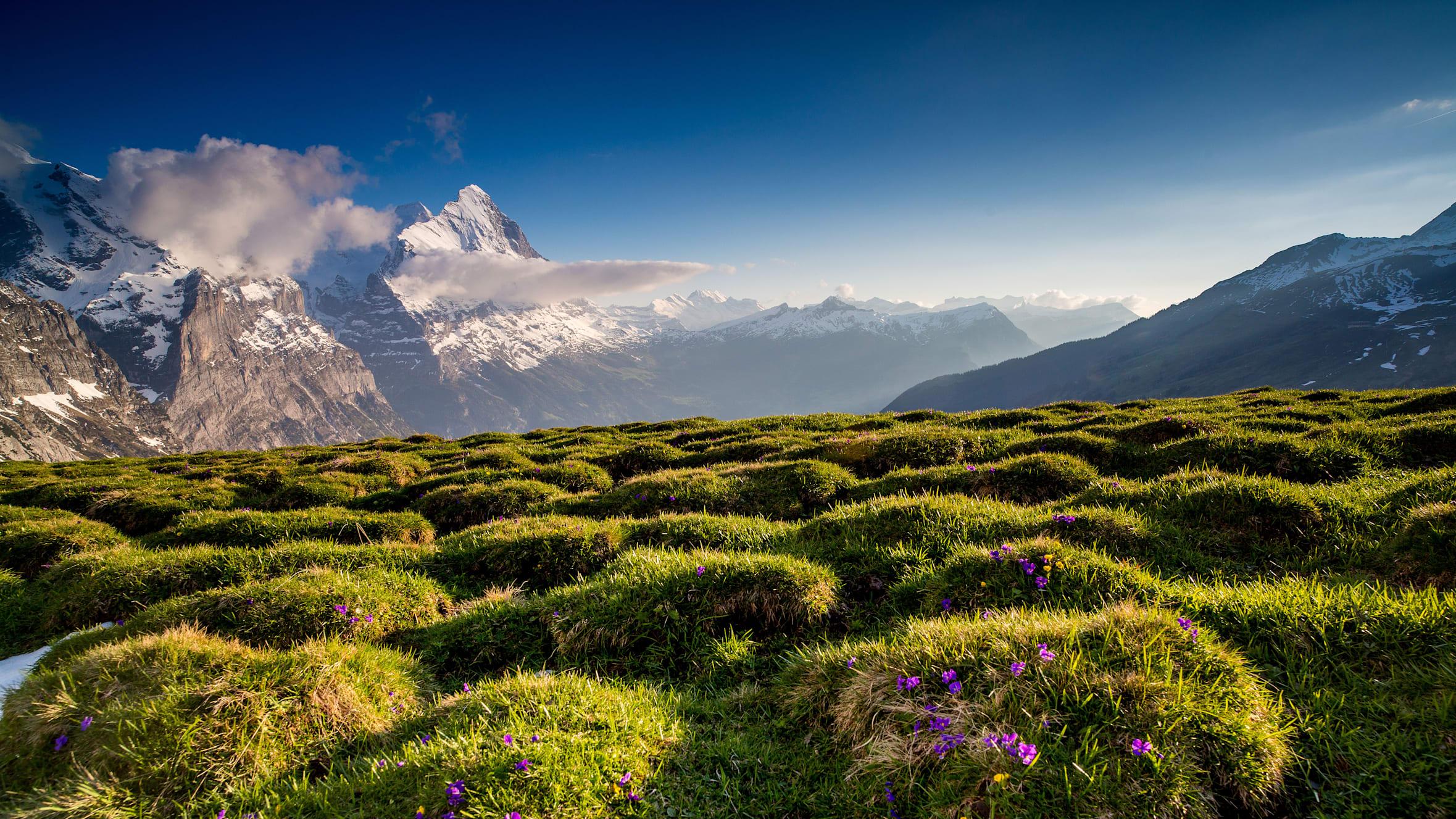 Berge, Eiger, Frühling, Grindelwald, Grindelwald-First-Sommer, Sommer, Verhältnisse, jungfrau.ch