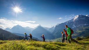 Landschaft, GrindelwaldBus, Grindelwald, Bus, Unternehmung, Car, Reisebus, Eiger, Schreckhorn, Grosse Scheidegg, Bussalp, Waldspitz