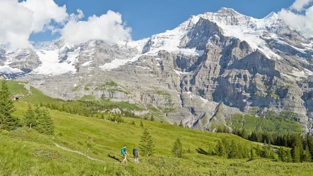 [Translate to English:] Kleine Scheidegg Wandern Lauberhorn Trail Panorama Sommer