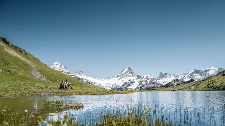 Wandern Bachalpsee Wetterhorn