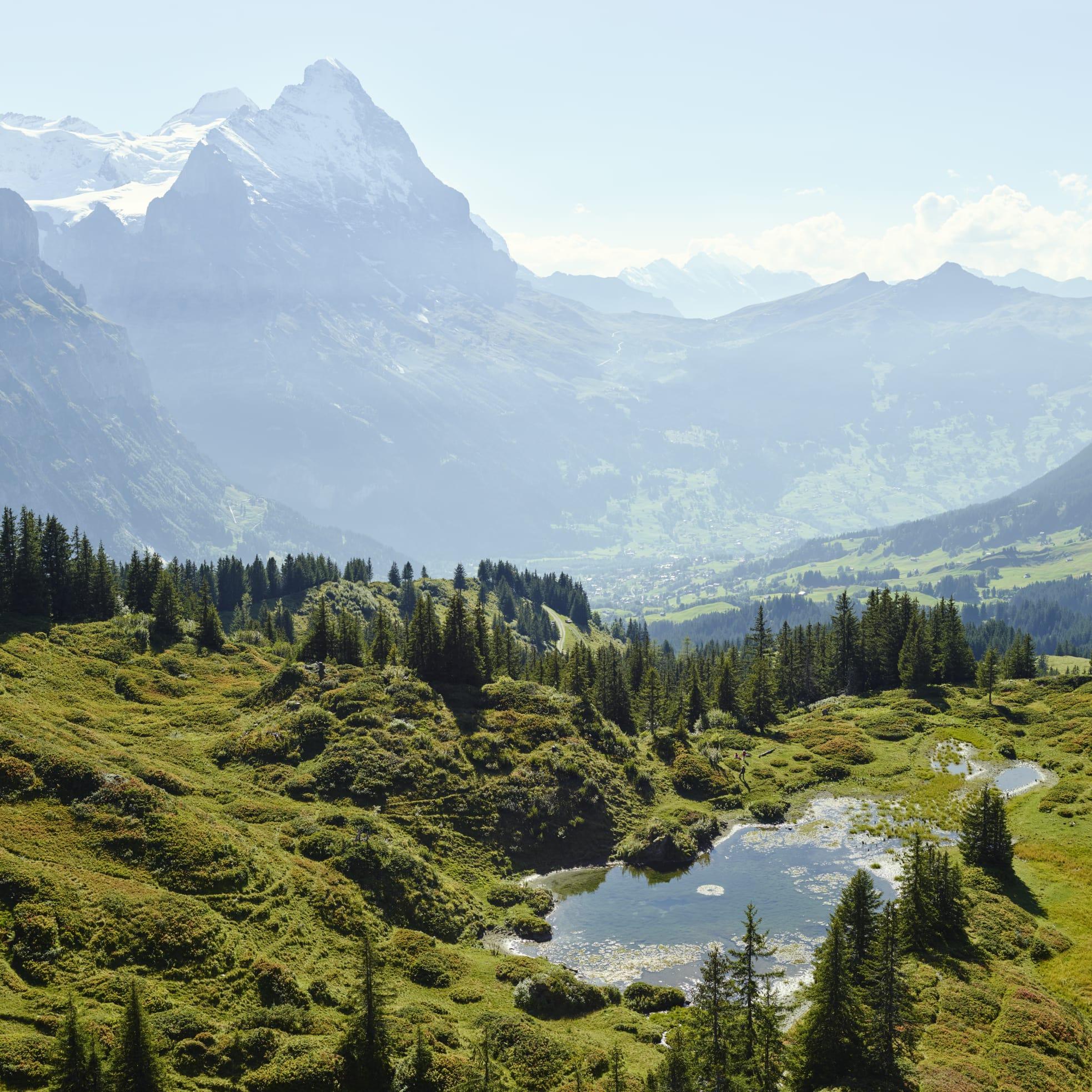 Antseeuwen Chlosterseeli Panorama Berner Oberland Sommer