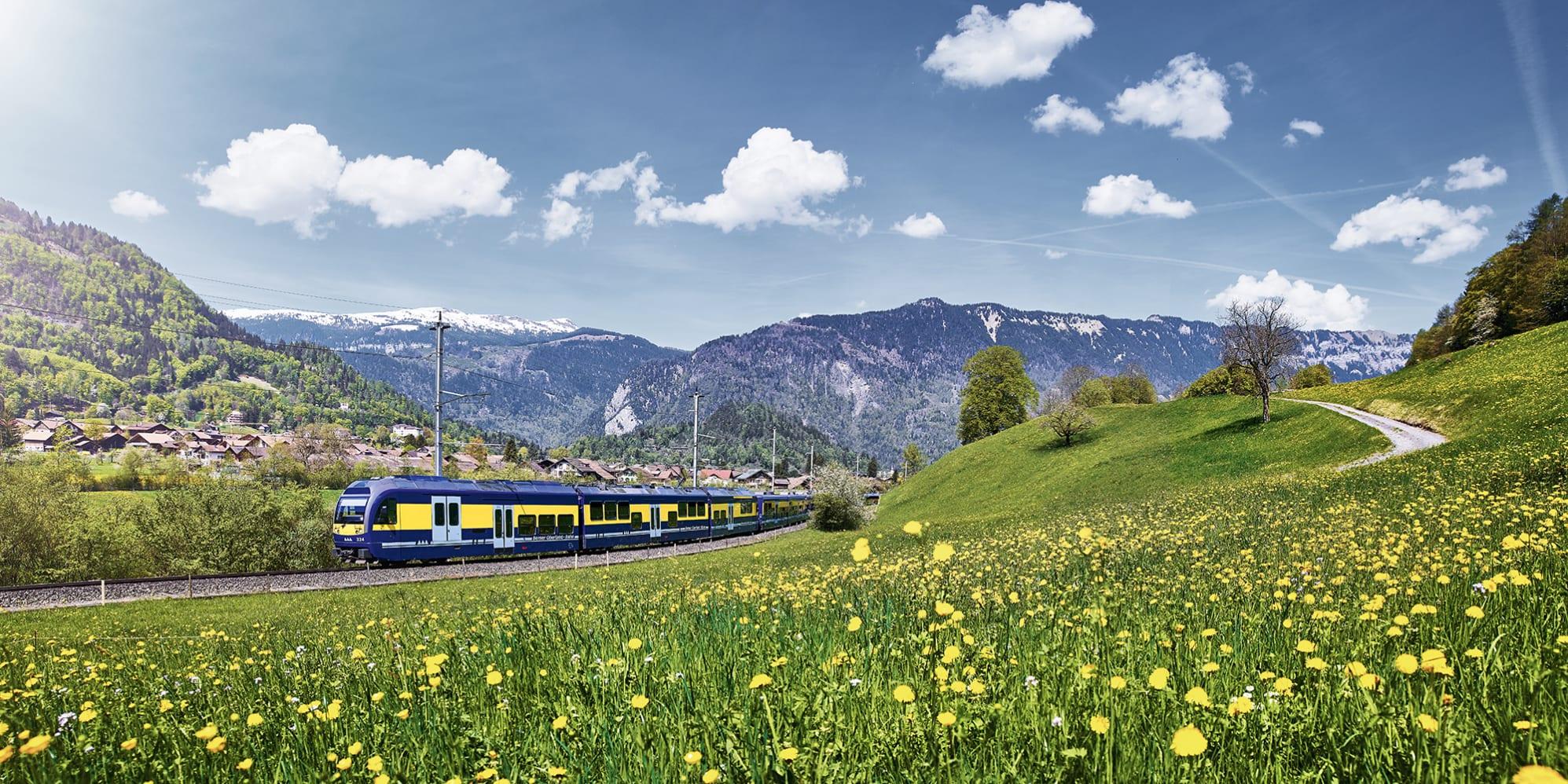 Bilddatenbank, Bilddatenbank-Berner-Oberland-Bahn, Bilddatenbank-Sommer, Bilddatenbank-Stichworte, Bilddatenbank-Themen