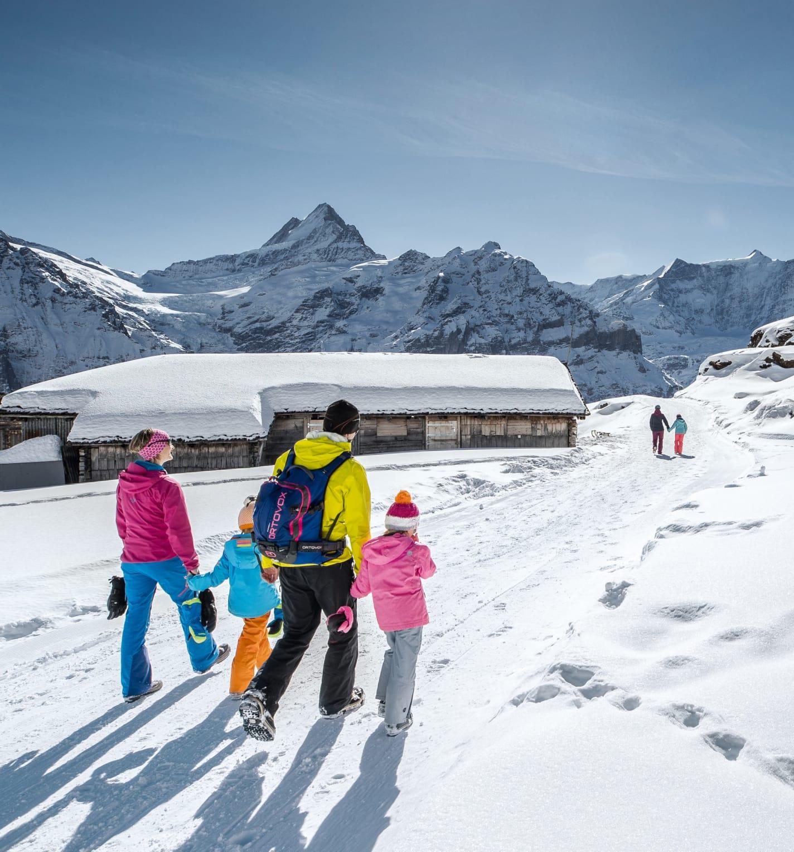 Jungfrau-Ski-Region, Neuschnee, Skigebiet-Grindelwald-First, Winter, Winterwandern
